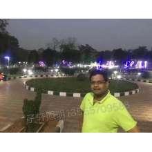 印度景观灯